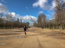 Corredor en febrero springlike Tuileries, París, Francia foto de archivo libre de regalías