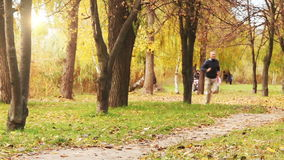 Corredor masculino que activa en parque en bosque del parque del otoño en colores de la caída almacen de metraje de vídeo