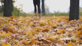 Corredor masculino que corre no parque do outono que pisa nas folhas de bordo secas Atleta novo que movimenta-se na folha caída c filme