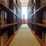Corredor na biblioteca Fotos de Stock