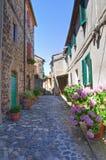 Corredor. Torre Alfina. Lazio. Itália. Imagens de Stock Royalty Free
