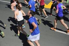 Corredores de la calle en el 29no maratón de Belgrado Imagen de archivo libre de regalías