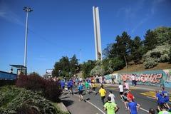 Corredores de la calle en el 29no maratón de Belgrado Imagen de archivo