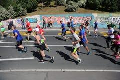 Corredores de la calle en el 29no maratón de Belgrado Imagenes de archivo