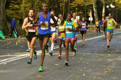 Corredores de maratón en Florencia, Italia Imagen de archivo libre de regalías