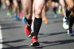 Corredores de maratona Imagem de Stock Royalty Free