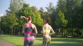 Corredores fêmeas bonitos que movimentam-se no parque do verão vídeos de arquivo