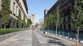 Corregidora gata Royaltyfria Bilder