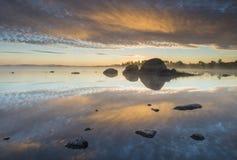 Correhuela en el lago Foto de archivo libre de regalías