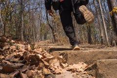 Correndo acima a montanha Imagem de Stock Royalty Free