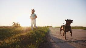 Correndo e giocando con i cani, bambini ami i cuccioli video d archivio
