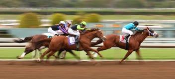 Correndo per la sua prima vittoria Fotografia Stock Libera da Diritti