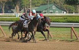 Correndo per la vittoria Fotografia Stock