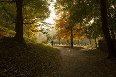 Correndo in un parco a Torino Italia Fotografia Stock