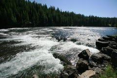 Corrente al fiume di yellowstone Immagine Stock Libera da Diritti