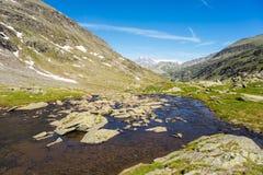 Corrente alpina di elevata altitudine nell'estate Fotografie Stock Libere da Diritti