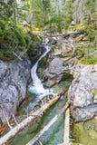 Corrente in alte montagne di Tatras, Slovacchia del potok di Studeny Fotografia Stock Libera da Diritti