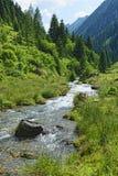 Corrente che attraversa le alpi zillertal di Tirol Austria Immagini Stock Libere da Diritti