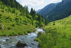 Corrente che attraversa le alpi zillertal di Tirol Austria Immagini Stock