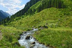 Corrente che attraversa le alpi zillertal di Tirol Austria Fotografia Stock Libera da Diritti