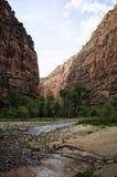 Corrente che passa canyon Immagini Stock