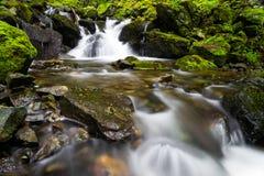 Corrente che precipita a cascata sopra le rocce con una cascata Fotografie Stock
