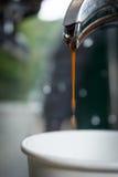 Corrente del caffè del caffè espresso che scorre dall'interno della macchina del caffè fotografie stock libere da diritti