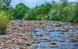 Corrente del fiume della montagna di acqua nelle rocce con la s blu maestosa fotografia stock