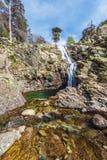 Corrente del fiume di Golo e cascata di Radule nell'isola di Corsica Immagine Stock Libera da Diritti