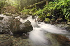 Corrente del fiume in pressa per balle Immagini Stock Libere da Diritti