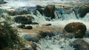 Corrente del fiume, ruscello video d archivio