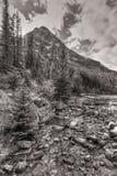 Corrente del lago vista in bianco e nero Fotografie Stock