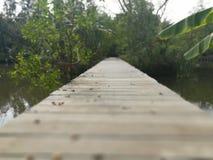 Corrente del legno dell'acqua dell'incrocio del ponte Fotografia Stock Libera da Diritti