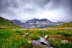 Corrente dell'acqua della montagna Fotografia Stock