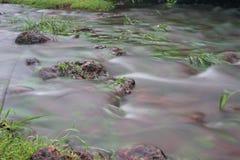Corrente dell'acqua piovana Fotografia Stock