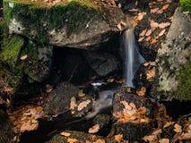 Corrente della cascata di autunno Fogli di autunno variopinti Foglie su groun fotografie stock libere da diritti