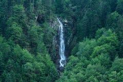 Corrente della cascata in una foresta verde fotografia stock libera da diritti