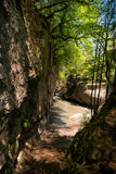 Corrente di acqua fra le rocce Immagine Stock Libera da Diritti