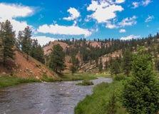 Corrente di Colorado del canyon dei ponti immagini stock