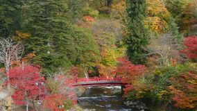 Corrente di Fudo ed il ponte rosso al supporto Nakano-Momiji, città di Kuroishi, prefettura di Aomori, regione di Tohoku, Giappon video d archivio