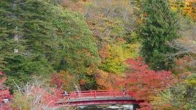Corrente di Fudo ed il ponte rosso al supporto Nakano-Momiji, città di Kuroishi, prefettura di Aomori, regione di Tohoku, Giappon stock footage