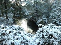 Corrente di Snowy fotografia stock libera da diritti