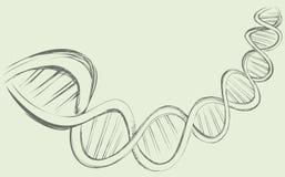Corrente do ADN Imagens de Stock Royalty Free