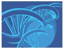 Corrente do ADN do vetor Fotografia de Stock Royalty Free