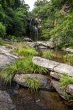 Corrente e Bride& x27; cascata dello stagno di s in Hong Kong fotografia stock libera da diritti