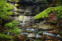 Corrente e scogliera nella foresta della montagna Fotografia Stock