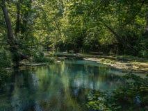 Corrente ed alberi sereni e verdi fotografia stock libera da diritti