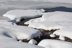 Corrente innevata sulla montagna di Kolob nell'Utah del sud fotografia stock