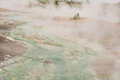 Corrente macchiata minerale verde nel parco nazionale di Yellowstone del bacino del geyser Immagine Stock
