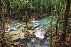 Corrente naturale dell'acqua calda Fotografia Stock